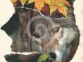 wolf_in_leaves__vlk_v_listi_2014