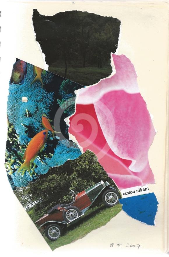 Going nowhere/Cestou nikam (2007)