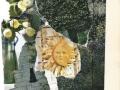 Garden/Zahrada (2004)