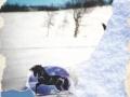 Winter dreams/Zimní sny (2004)