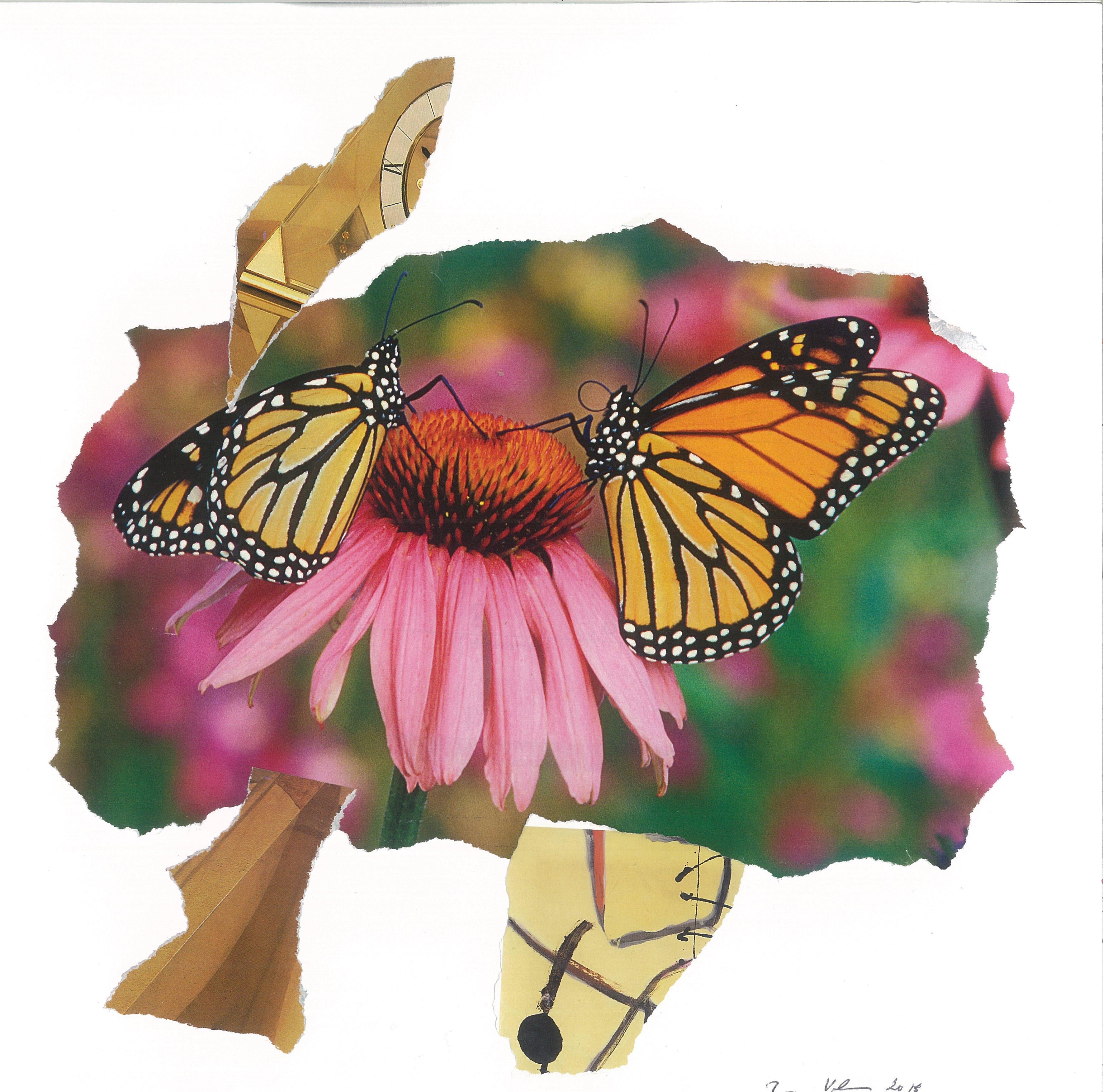 Butterfly-Love_Motyli-laska-18
